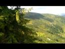 красна полонини Домарса природа ліс гори ягоди красотіща