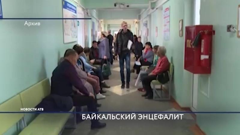 Байкальский: Новый вид клещевого энцефалита открыли иркутские учёные