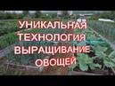 Игорь Лядов углубленный рассказ о создании грядки-короба