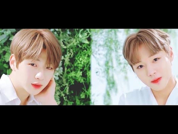 [강다니엘 박지훈/워너원] 이니스프리 인스타로그 그린티씨드 인별 영상 (Danielamp