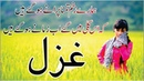 Urdu Hindi Poetry Shayari Collection Hamare Zakhm E Tamanna Purane Ho Gae Hain Heart Broken