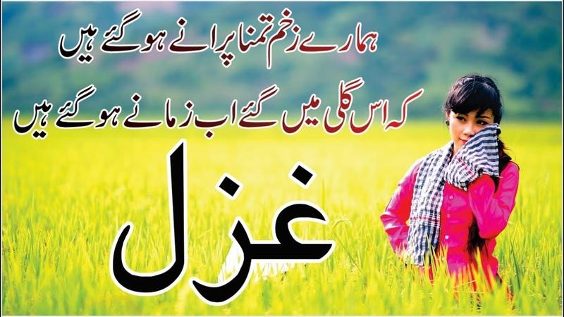 Urdu Hindi Poetry Shayari Collection | Hamare Zakhm-E-Tamanna Purane Ho Gae Hain | Heart Broken