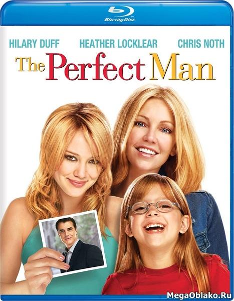 Идеальный мужчина / The Perfect Man (2005/BDRip/HDRip)
