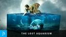The Lost Aquarium Surreal Photo Manipulation in Photoshop Speed Art