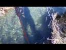 Камчатская рыбалка на речке