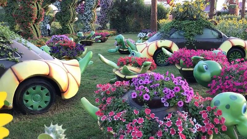 Парк цветов в Дубае Dubai Miracle Garden Дубай миракл гарден сегодня русский гид в Эмиратах