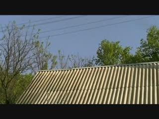 Дятел стучит по крыше как будто стреляют из пулемета (6 sec)
