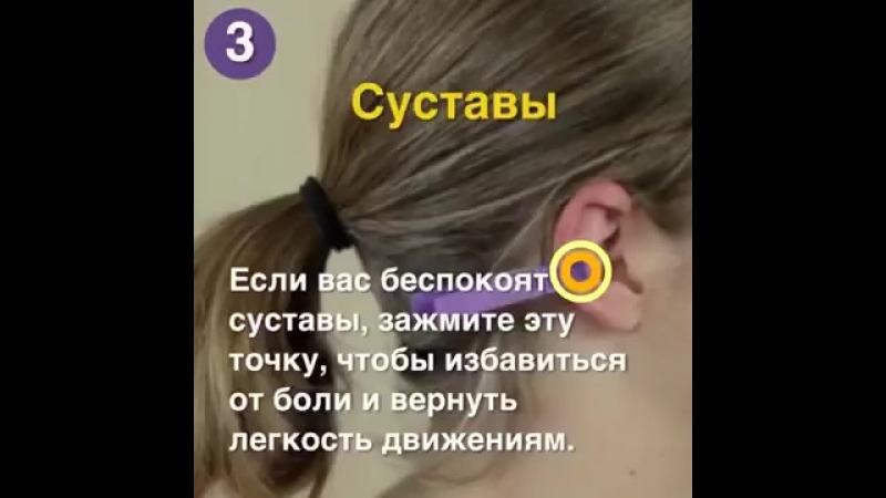 Рефлексология_ Прищепка на ухе поможет избавиться от боли