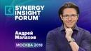 Андрей Малахов Экономика внимания SYNERGY INSIGHT FORUM 2018 Университет СИНЕРГИЯ