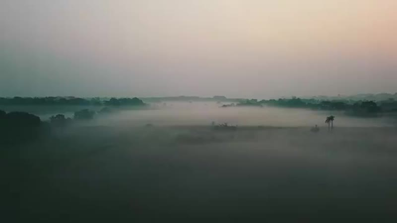 Восход солнца в Шридхаме Маяпур с высоты птичьего полёта. Видео от Шри Баларам д.