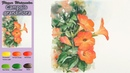 Campsis Grandiflora Drawing Basic Flower Watercolor wet in wet Arches rough NAMIL ART