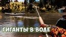 Far Cry 5 ☞ ПЕРВЫЙ РАЗ НА РЫБАЛКЕ ☞ Прохождение, приколы, фейлы!