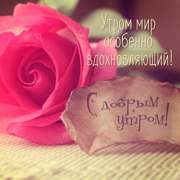 Раннего,вдохновляющего утречка,друзья!)