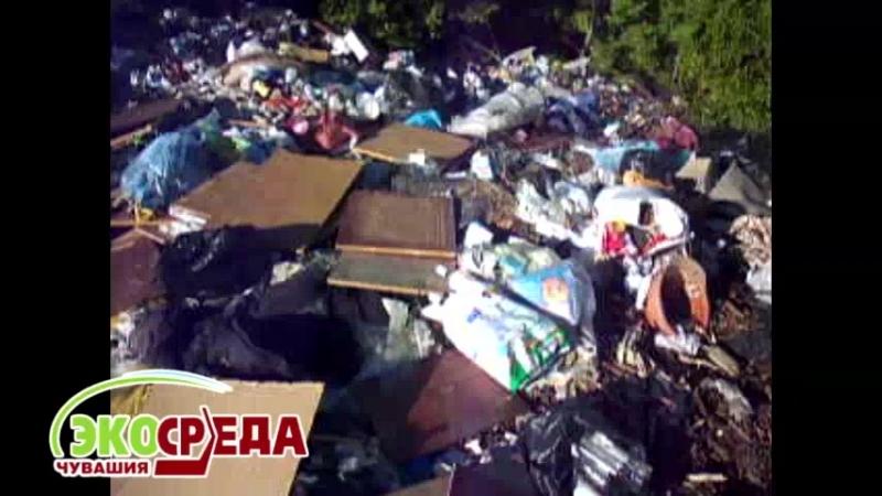В Алатыре за обелиском войнам-землякам находится куча мусора, а дети играют рядом с загрязненным прудом
