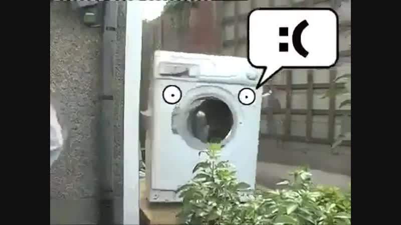 кирпич в стиралке FFFUUUUU если бы не было системы стабилизации