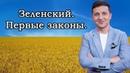 Зеленский президент Украины первые законы и указы