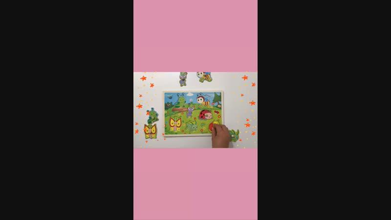 Рамка -вкладыш «Веселые жучки»