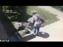 Пенсионерка украла цветы Ярославль black list yar