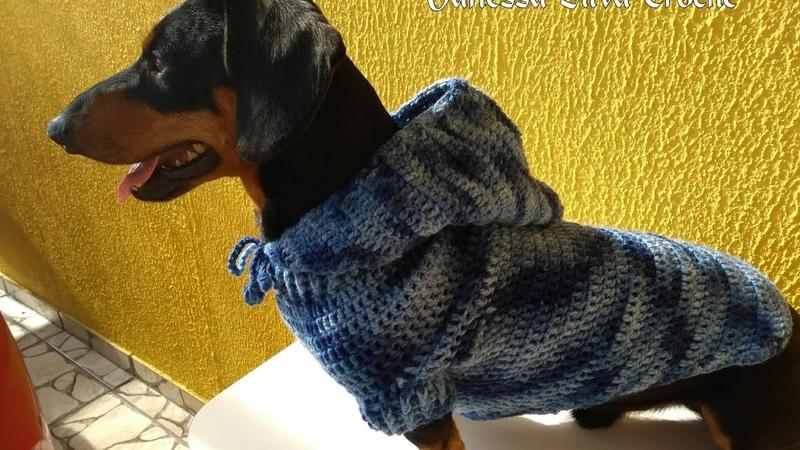 Roupa Pet com Capuz em Crochê Tutorial Diy Crochet