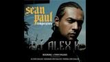Sean Paul x Nitrex - Temperature (Dj Alex K Edit) 2019