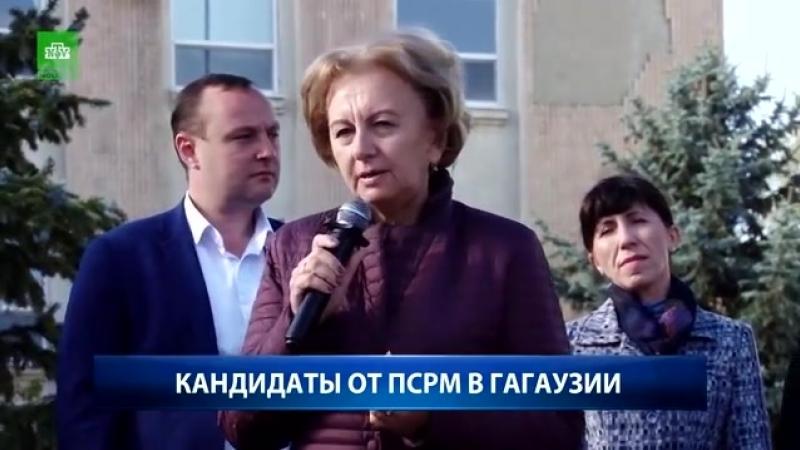 NTV Moldova КАНДИДАТЫ ОТ ПСРМ В ГАГАУЗИИ mp4