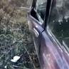 НТВ on Instagram Природа наносит ответный удар в Красноярске медведь в хлам разгромил машину охотников НТВ охотники автомобиль медведь жив