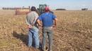 Соя посев по кукурузе GHERARDI Нулевая обработка почвы NO till Soja Argentina