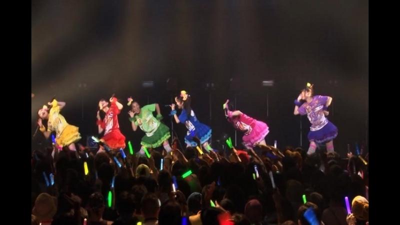 Team Syachihoko - LIVE Eizou ~Soko Soko Premium na Event @Akasaka BLITZ 2013.7.19