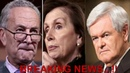Gingrich UNBLOCKS A SECRET Over BORDER!! Pelosi, Schumer Shaking!!
