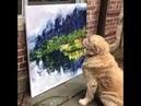 Собака художник