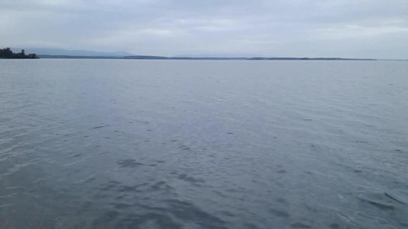 У озера всегда прекрасно В любую погоду