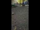 Денис Лещёв - Live