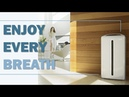 Enjoy every breath, with Atmosphere Sky by Amway
