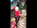 папина помошница-золотая рыбка..
