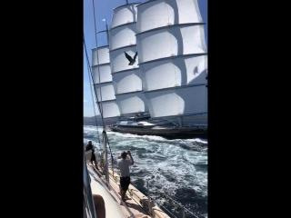 Потрясающая современная парусная яхта!