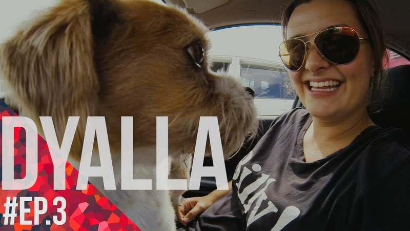 Feel the Vibe with DYALLA Ep.3 - How Casey Neistat changed her life [New Zealand]