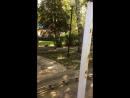 В парке катаемся 😊