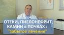 Отеки, пиелонефрит, камни в почках - уникальное лекарство за 70 рублей. Забытая медицина.