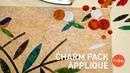 Charm Pack Appliqué Stashbusting Precut Ideas Quilting Tutorial with Edyta Sitar