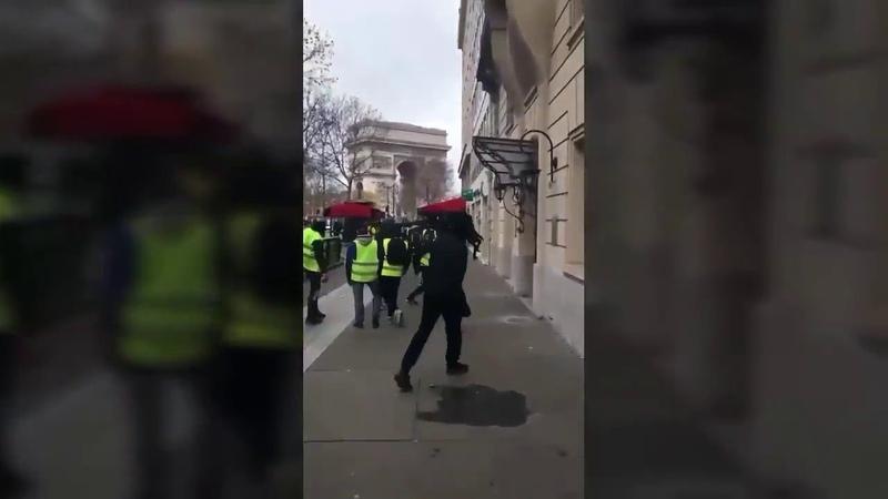 Желтые жилеты Владимира Путина Уроки парижского
