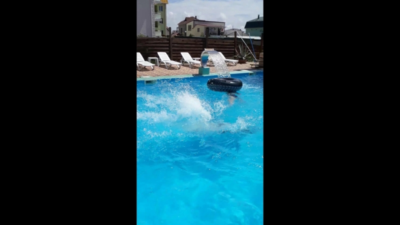 парный прыжок)ПапаСын😍