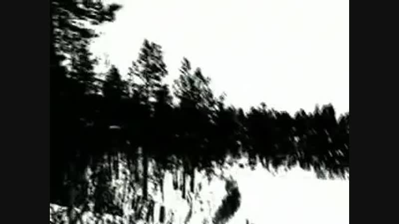 Darkthrone - Transilvanian Hunger (Official Music Video)