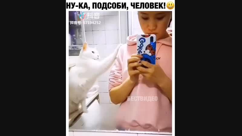 ну ка подсоби, человек )