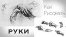 Как Рисовать РУКИ Карандашом / Учимся Рисовать КИСТИ РУК Карандашом