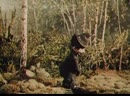 Мультфильм Карандаш и Клякса - веселые охотники Союзмультфильм, 1954 г.