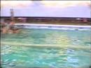 Бассейн Бригантина. Год 1994...