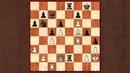 Шахматные комбинации Тест по тактике для шахматистов 3 разряда