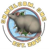 Логотип шмэл комьюнити снг