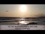 Гуляя по пляжу, девушка нашла золотое кольцо. То, что произошло потом, просто невероятно!.mp4