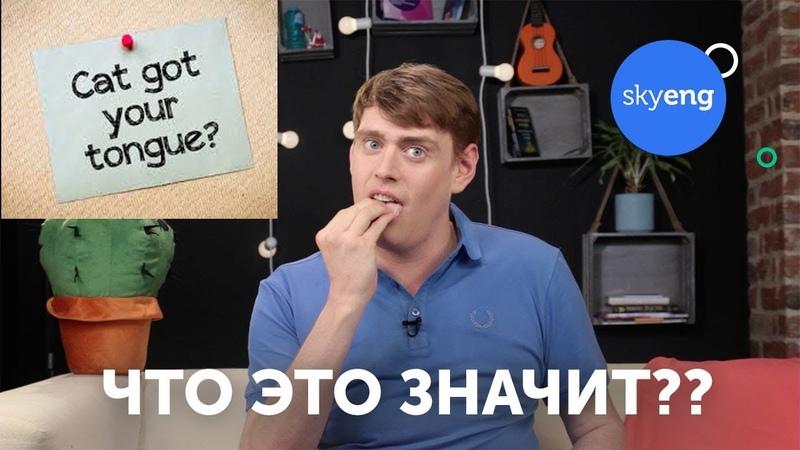 Английские идиомы VS русские пословицы Skyeng